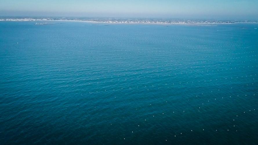 vue aerienne des lignes de mouillages innovants ino-orpe