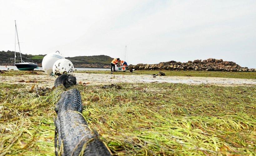 À Trébeurden, des mouillages plus respectueux des fonds marins