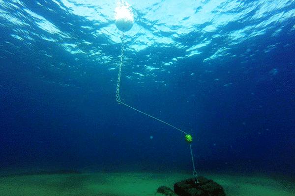 ligne de mouillage écologique installée en Mediterranée
